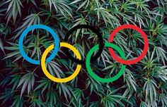 #Cannabis & the Competitive Edge via #CannabisNow #Olympics #Rio2016 #MichaelPhelps #mmot