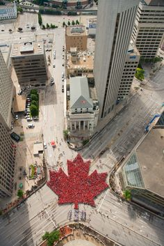 Canada Day Living Maple Leaf – July 2017 Thank you to everyone who joined us today! proud Winnipeggers joined us bright and early at Portage & Main! Canada 150, Toronto Canada, Canada Pictures, Cool Pictures, Canada Day Fireworks, Canada Memes, Calgary, All About Canada, Meanwhile In Canada