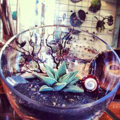 A beautiful creation by Miss Ellen at Oddyssea