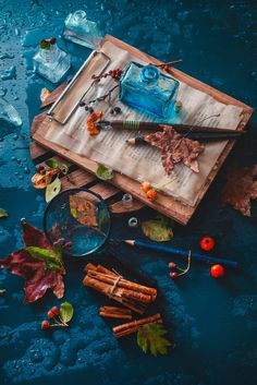 Dark autumn still life with rain, book pages, inwell, leaves, berries and cinnamon on a wet... by Dina (Food Photography) on 500px