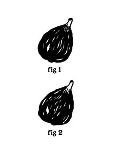 Funny pictures about Fig. Oh, and cool pics about Fig. Also, Fig. The Meta Picture, You Draw, Illustrations, Fun Illustration, Make Me Smile, Just In Case, I Laughed, Laughter, Haha