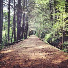 photo by michellelncln: #hiking