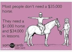 """""""But I wanted a horse that was beginner safe!""""...please read this before buying/owning your first horse!"""