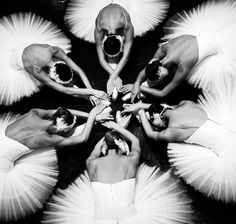 Happy #tututuesday! Here's a bevy of be-tutued swans (photo by Dina Johnsen) pic.twitter.com/KWMRlR6G9p