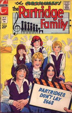 Partridge Family Comic