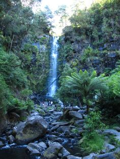 Erskin waterfall, The Fall, Australia