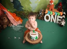 Colorful woodland first birthday cake smash, orange, blue, and green, woodland animals Birthday Cake Smash, First Birthday Cakes, First Birthday Parties, First Birthdays, Cake Smash Pictures, Chadds Ford, Wild One Birthday Party, Wild Ones, Photographing Babies