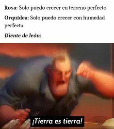 Memes Do Dia, Blackpink Memes, Best Memes, Funny Spanish Memes, Spanish Humor, Stupid Funny Memes, Funny Images, Funny Pictures, Harry Potter