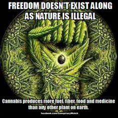 End the Drug War already!