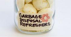 Homemade Garbage Disposal Refreshers | POPSUGAR Smart Living