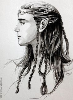 An elf lord of the Noldor. http://evankart.tumblr.com/post/71314484906/an-elf-lord-of-noldor