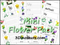Free Mini Flower Pack - 3 Part Cards, Beginning Sounds, Matching Cards, and Read Write the Room