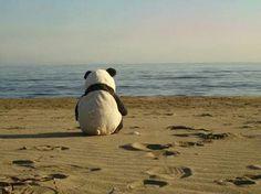 Yo cuando voy a la playa Panda vacation
