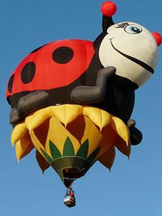 Hot Air Balloons - 12 Spectacular Hot Air Balloons at WomansDay.com - Woman's Day