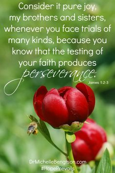 Consider it pure joy, my brothers and sisters, whenever you face trials of many kinds, because you know that the testing of your faith produces perseverance. James 1:2-3 Christian Inspirational quote. Bible Verse. Scripture.