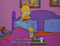 This photo for physics class The 100 Best Classic Simpsons Quotes