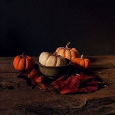 Check out this stunning gallery of the 100 best iPhone photos submitted by our readers in Their talent and creativity is incredible! Best Iphone, Still Life, Pumpkin, The Incredibles, Photos, Art, Art Background, Pumpkins, Pictures