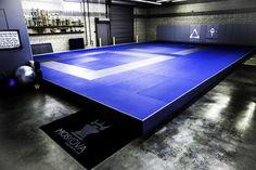 Jiu-Jitsu & how to counter them dojo, jiu jitsu gym, martial arts gym, Dojo, Taekwondo, Academia Jiu Jitsu, Jiu Jitsu Gym, Martial Arts Gym, Sports Shoes For Girls, Mma Gym, Gym Interior, Arquitetura