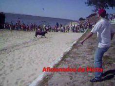 Largadas de Toiros na Praia do Rosario (Moita do Ribatejo) 2009 :