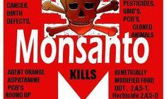 Monsanto GMO Protestors #monsanto #gmo #geneticallymodified