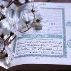 Allah Islam, Islam Quran, Al Quran Al Karim, Quran Sharif, Quran Book, Coran Islam, Holy Quran, Alhamdulillah, Quotes About God