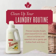 New Young Living Canada Products!