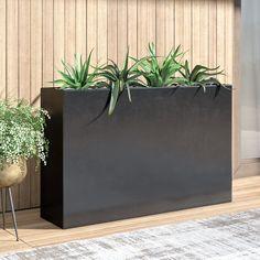 Mercury Row Shehan Fiberglass Planter Box Color: Grey, Size: H x W x D Plants For Planters, Trough Planters, Corten Steel Planters, Metal Planters, Garden Planters, Indoor Plants, Planter Pots, Indoor Planter Box, Black Planters