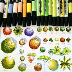Shrub Symbols - Learn Landscape Design at http://www.landscapeconsultantshq.com Landscape Consultants HQ: