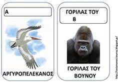 ΖΩ4 Pet Day, Animal Crafts, Literacy, Movies, Movie Posters, Animals, Toys, Activity Toys, Animales