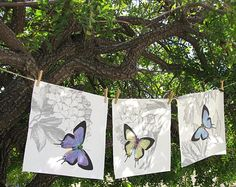 AnLei Jungren I sell pillow covers, table linens and art panels on Etsy. artanlei.etsy.com I used a butterfly from Old Time Vignettes and an etching from Floral Motifs to create this wonderful spring combination.