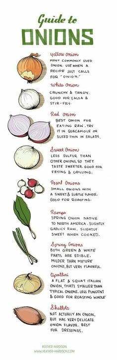 Guide for onions