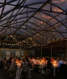 Candlelight greenhouse reception