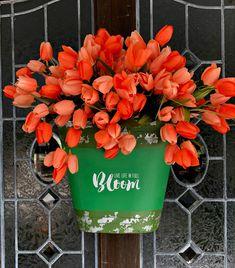Bucket of tulips for the door