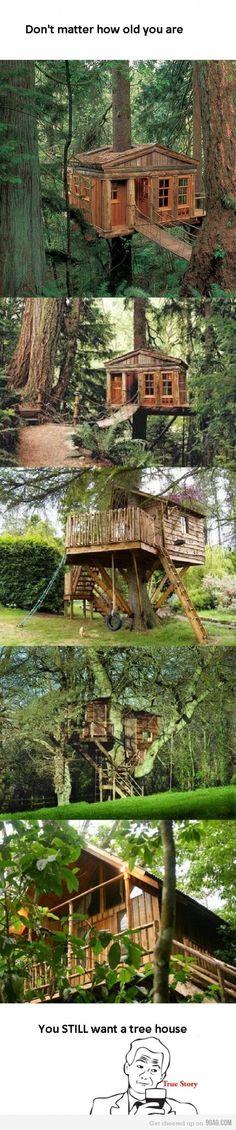 I want a Treehouse!