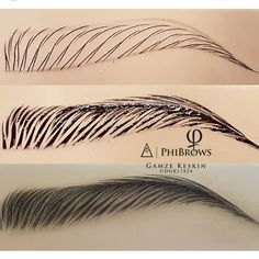Microblading Eyebrows : Love to see the practice and the art on late . You can tell there's a lot of passion based off what we chose… Mircoblading Eyebrows, Permanent Makeup Eyebrows, Eyebrow Makeup, Eyelashes, Eyebrow Tinting, Eyebrow Pencil, Microblading Eyebrows Training, Silvester Make Up, Eyebrow Design
