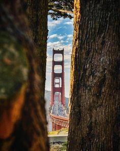 Golden Gate Bridge by chameleonimage