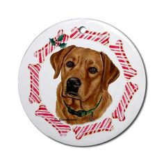 Fox Red Labrador Christmas Ornament Round Pets Round Ornament by CafePress. Instantly accessorize bare wall-space with our Round Ornament. Makes great room or office accessories, fun favors for birthday parties, wedding or baby shower Ornaments, or adding a unique, special touch to gift-wrapped packages. Comes with its own festiv Pets Round Ornament Instantly accessorize bare wall-space with our Round Ornament. Makes great room or office accessories, fun favors for birthday parties, wedding…