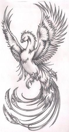 Phoenix Tattoo Pattern | Tattoo Company Phoenix Tattoos For Men Shops
