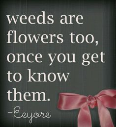 Eeyore from Winnie the Pooh. I love Eeyore! Eeyore Quotes, Great Quotes, Inspirational Quotes, Awesome Quotes, Motivational Quotes, The Garden Of Words, Winnie The Pooh Friends, Garden Quotes, Disney Quotes
