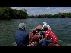 Reportaje sobre la inmigracion ilegal de mexicanos a los EE UU