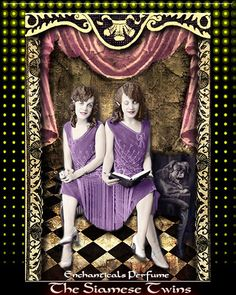 The Siamese Twins Gothic Carnival Perfume by EnchanticalsPerfume, $23.00