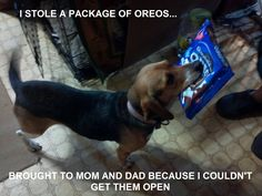 """I stole a package of Oreos..brought to mom and dad because I coudln't get them open."""