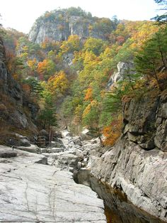 Songnisan National Park (Korean: 속리산국립공원, 俗離山國立公園), South Korea.