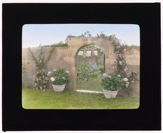 "Check out these color slides from 1914, of the Robert Carmer Hill House on Lily Pond Lane: Gray (Grey) Gardens! "" from the Library of Congress, this collection contains homes with architecturally noteworthy gardens nationwide. These slides are of..."
