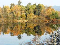 Chub River Reflections Autumn Adirondacks by AdirondackMtnImages, $30.00