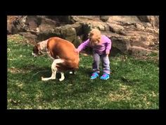 Instead of being grossed out like some of us, this little girl encourages her dog when he needs it most | Rare
