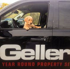 Wishing everyone a happy Monday from us and this little cutie!  #Winnipeg #Gellers #SnowRemoval #PropertyService #HappyMonday #Winter