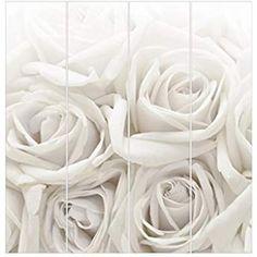 Bilderwelten Rosenbild Raumteiler White Rose Blumen 250x120cm inkl. transparenter Halterung: Amazon.de: Küche & Haushalt Divider, Shabby, Lilies, Flowers, Household, Room Screen