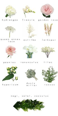 fifty flower floral inspiration