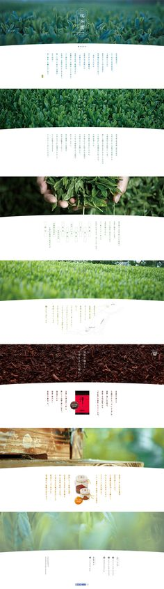 瑞芳園 - 昔ながらの有機農法で作る旨いお茶【食品関連】のLPデザイン。WEBデザイナーさん必見!ランディングページのデザイン参考に(シンプル系) Food Web Design, Web Design Mobile, Best Web Design, Book Layout, Web Layout, Layout Design, Website Layout, Minimal Web Design, Site Shopping